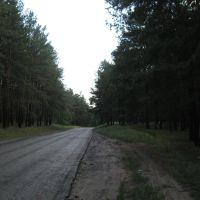 Дорога на Ямполь, Кировск
