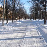 Зима на ул. Карпинского, Краматорск
