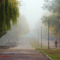 The Fog. Jubilee Park. Kramatorsk. Туман. Парк Юбилейный. Краматорск, Краматорск