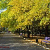 Autumn. Jubilee Park. Kramatorsk. Осень. Парк Юбилейный. Краматорск, Краматорск