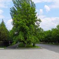 площадь, Красный Лиман