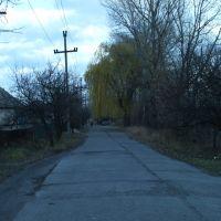 улица Торговая, Красный Лиман