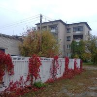 ул.Крупская, Красный Лиман