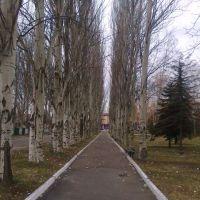 городской парк, Красный Лиман