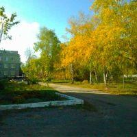 г.Марьинка , ул.Заводская  20.10.2012г., Марьинка