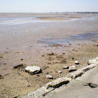 Весенний отлив, Новоазовск