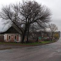 Выезд на Константиновку, Новоэкономическое