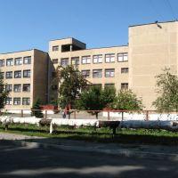 School №6