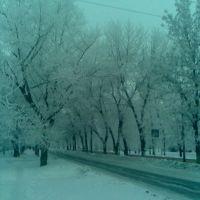 Зимний парк, Старобешево