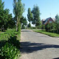 Dubrava, Ясиноватая