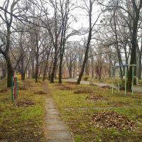 парк Дмитревка, Константиновка