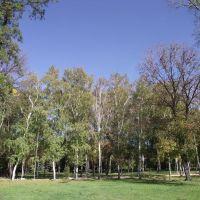 парк Металлургов, Константиновка