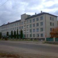 Лікарня, Андрушевка