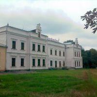Усадьба Терещенко, Андрушевка