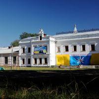 Andrushivka (2010/08/23), Андрушевка