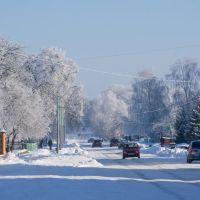 Солнечное зимнее утро/Winter sunny morning, Барановка