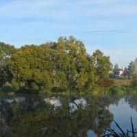 Утреннее спокойствие / Morning calm. Panorama, Барановка