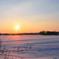 Конец зимнего дня / End of Winter Day, Барановка