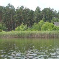 озеро,селище Біла Криниця, Белая Криница