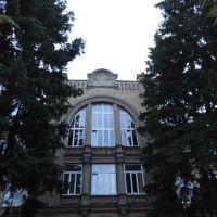 Медичний коледж - Medical College, Бердичев