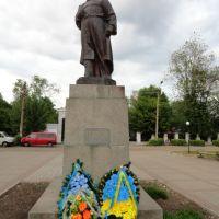 Памятник Шевченку - Monument to Shevchenko, Бердичев