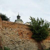 Монастир босих кармеліток... - Monastery of Discalced Carmelites ..., Бердичев