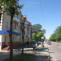вулиця Лібкнехта, Бердичев