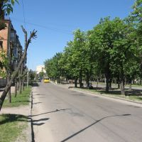 каштанова алея, Бердичев