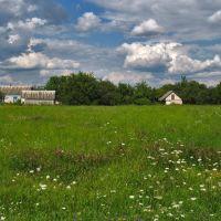 Гульский пейзаж..., Броницкая Гута