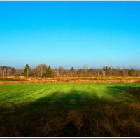 Озимь (Winter crop), Броницкая Гута