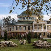 Острозька академія *Ostroh Academy*, Броницкая Гута
