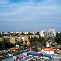 базарчик, Быковка