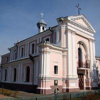Бердичів - Костел Святої Варвари, 1826, Быковка
