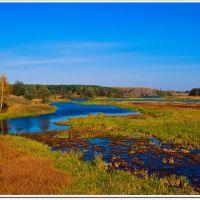 Осень на реке Уж, Быковка