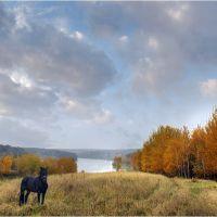 Осенние мотивы II, Быковка