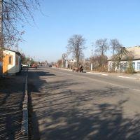 Головна вулиця також, Володарск-Волынский
