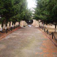 Монумент Афганцам, Володарск-Волынский