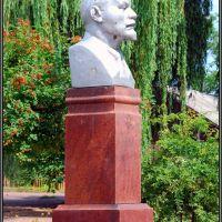 Памятник В.И.Ленину, Володарск-Волынский