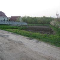 Ватутіна, Гришковцы