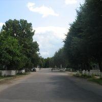 ул. Шевченка, Емильчино
