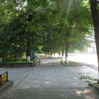 Алейка возле парка, Емильчино