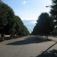 Центр, Емильчино