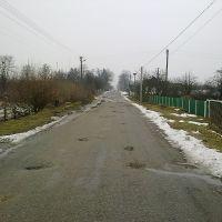 Вулиця Шевченко, Емильчино