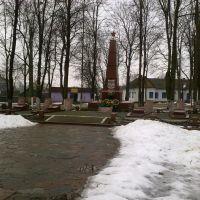 Монумент слави героям выйни, Емильчино