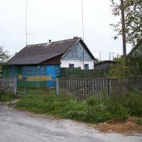 Дом дяди, Емильчино