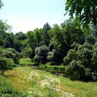 пейзаж, Житомир