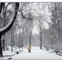 снегопад, Житомир