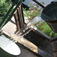 Tasty water, Иванополь