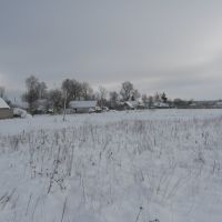The winter field), Иванополь