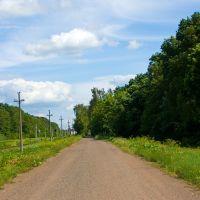 Road in Korosten/Дорога в Коростене, 16.06.2010, Коростень